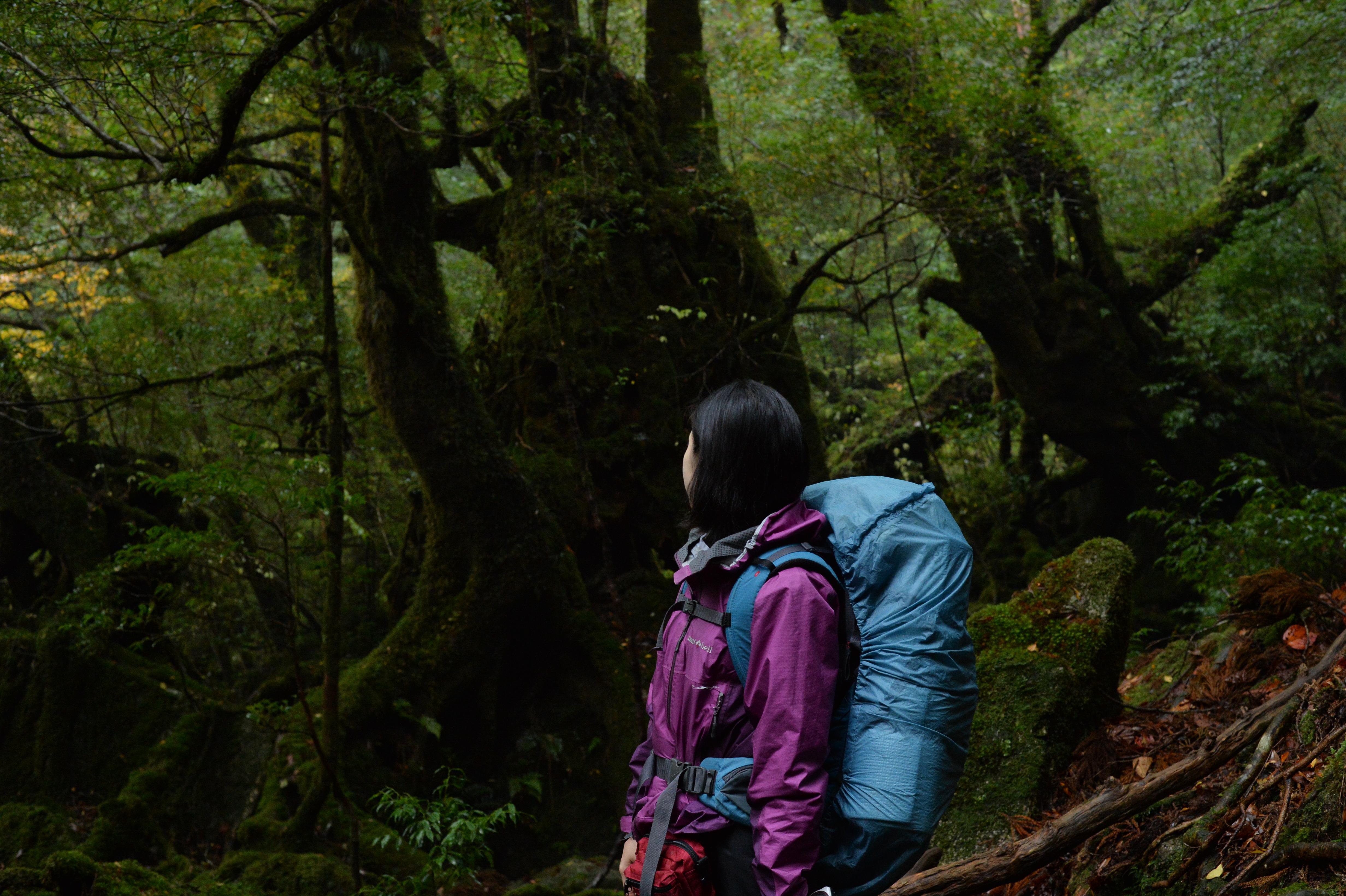 白谷雲水峡『もののけの森』&リバーカヤック!山と川を満喫♪(No.36)